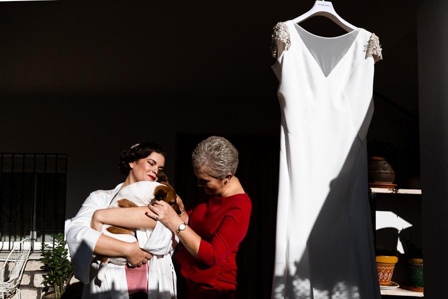 perro y vestido de novia